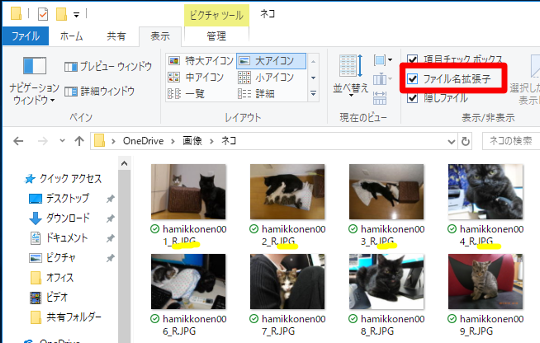 Windows 10 Fall Creators Updateでリボンからファイルの拡張子を表示するには